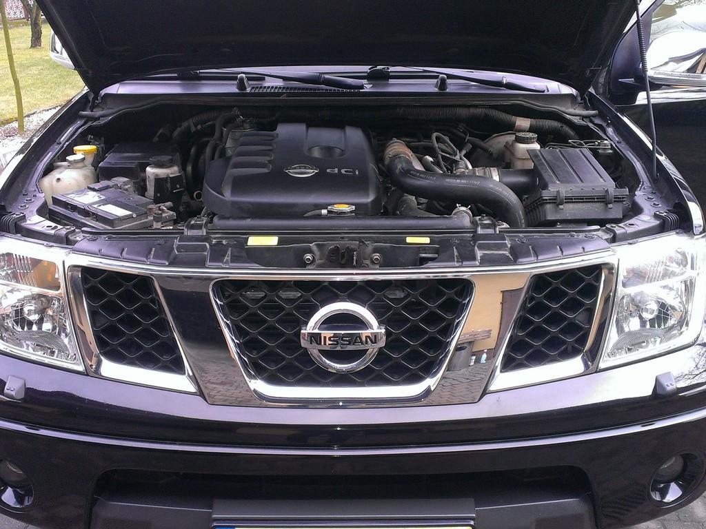 Nissan Navara. Niedrogi kolos